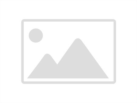 vente maison EGLISENEUVE D'ENTRAIGUE 400m2 65000€